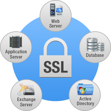 SSL monitoring is an important element of internal system security