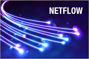 Learn what netflow is