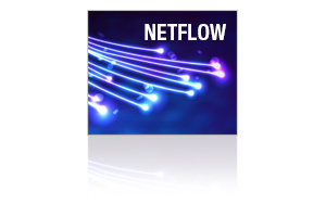 NetFlow Monitoring