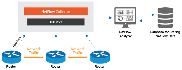 NetFlow Collector is a device that collects exported flow data