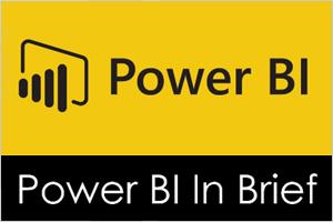 Power BI in Brief