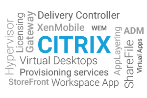 Citrix in the middle