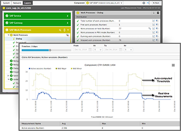 SAP Monitoring Tools for SAP Performance Management